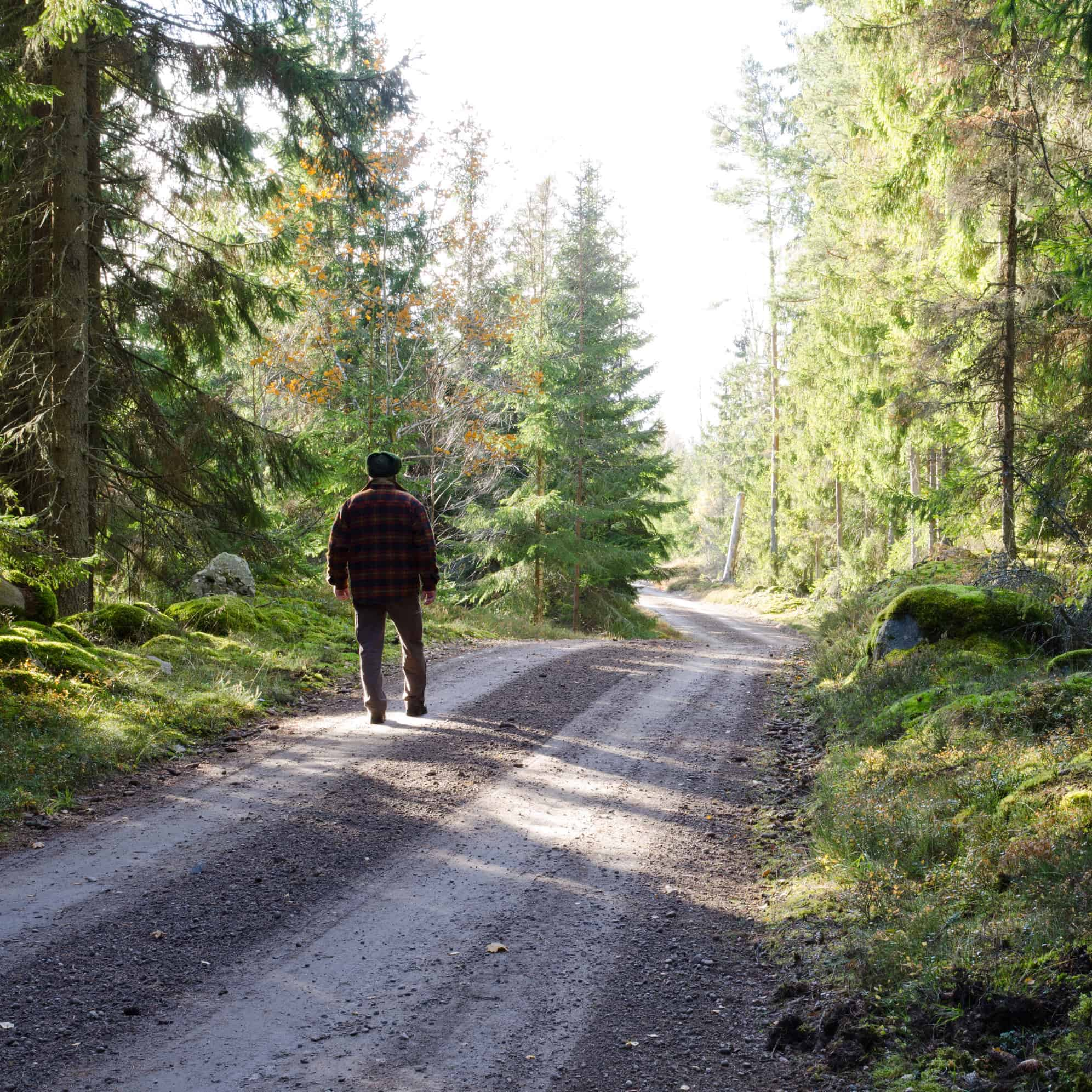 man walking on road in the woods